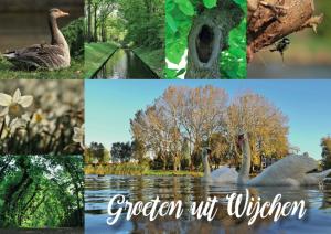 Ansichtkaart 'flora & fauna' - Wijchen=