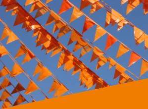 Alle Wijchense oranje initiatieven op een rij!